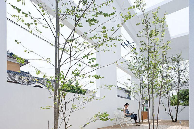 jardin-casa_-n