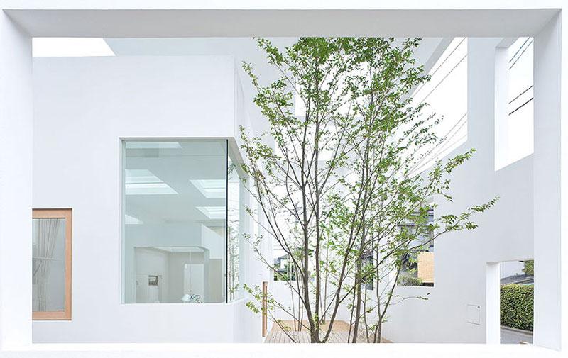 jardin-vivienda