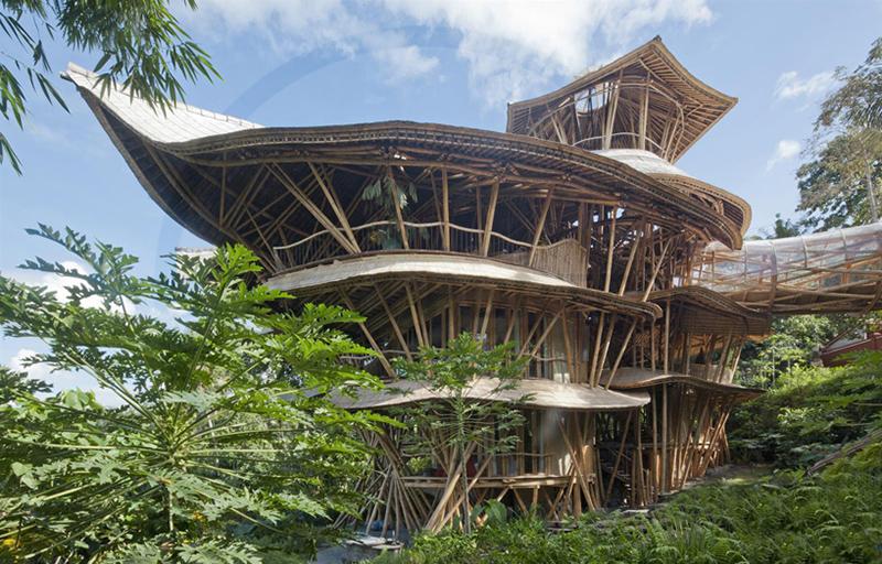 casa-bambu-3