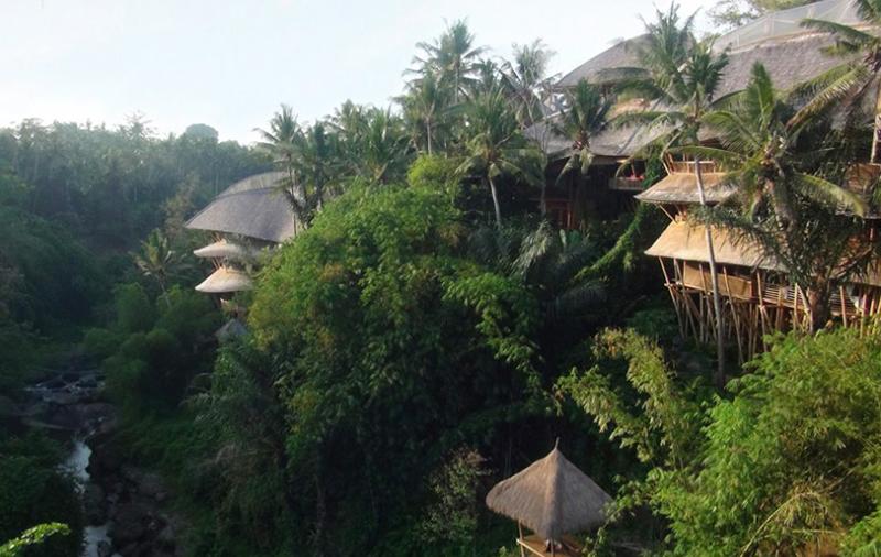 casas bambú